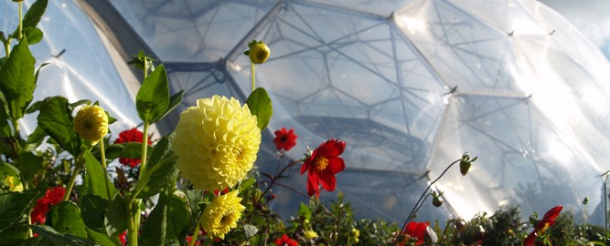 Cornwall's Eden Project offers many lessons for mine closure